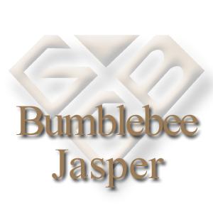 Bumblebee Jasper